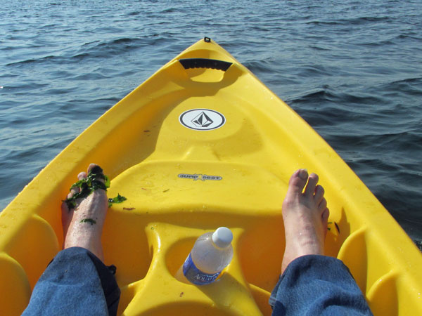 mike watt paddling in pugent sound on september 21, 2014