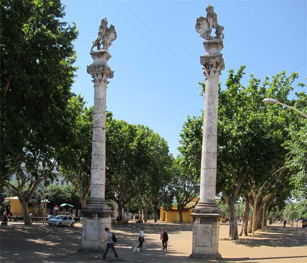 the north end of the alameda de hercules in seville, spain