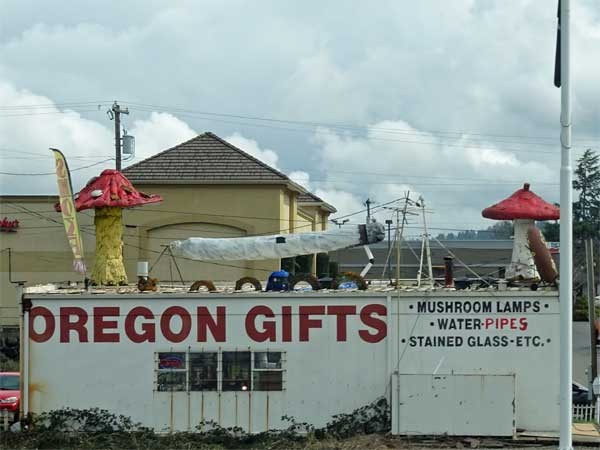 gift shop in southern oregon I always trip on, march 23, 2019